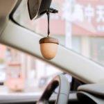Treo xe tinh dầu ô tô hạt dẻ Acorn giá tốt HCM